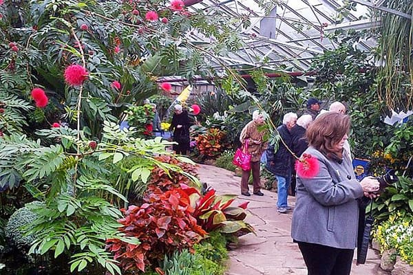 Seniors from the Cardinal Retirement Residence visiting a greenhouse full of beautiful flowers.
